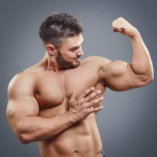 Hormones & Peptides